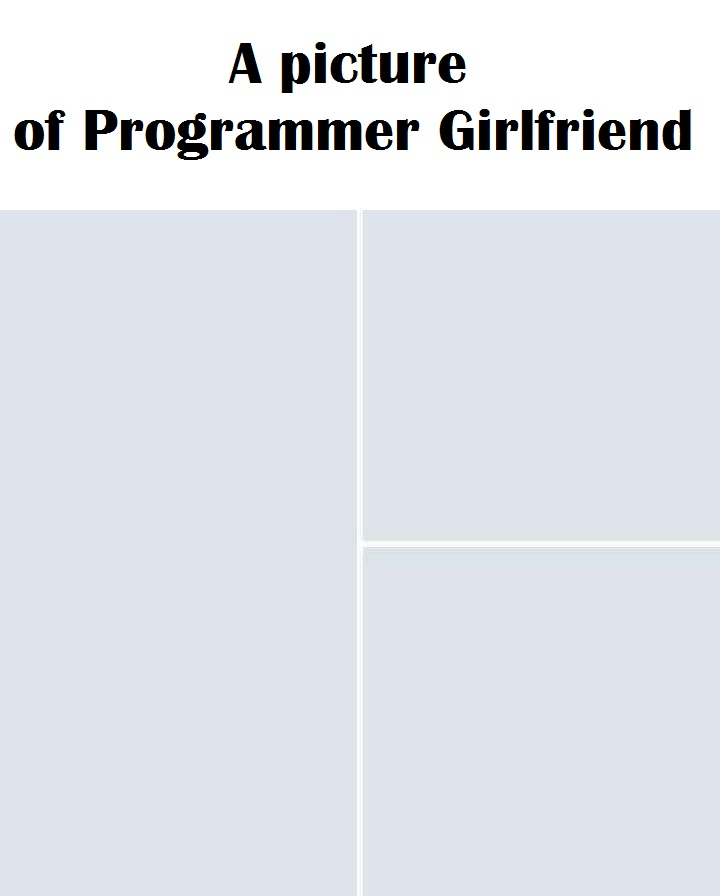 a picture of programmer girlfriend